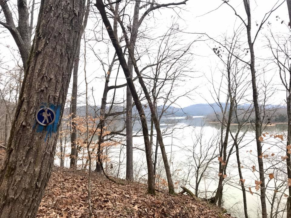 Trail sign and tree overlooking Cordell Hull Lake on the Bear Waller Gap Hiking Trail