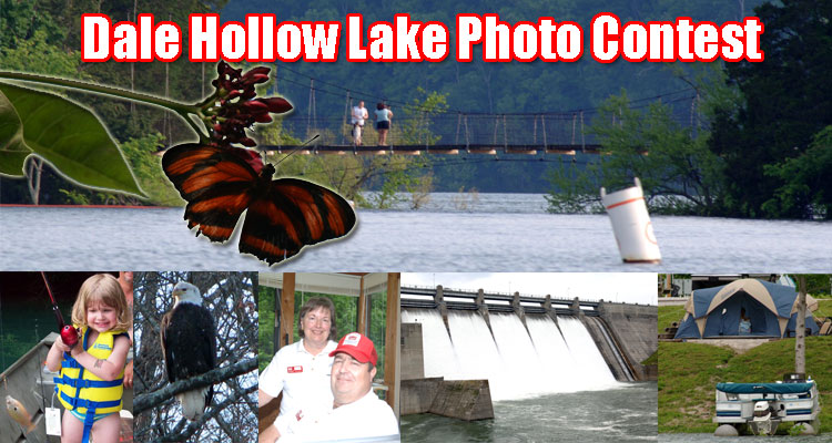 Dale Hollow Lake Photo Contest Collage