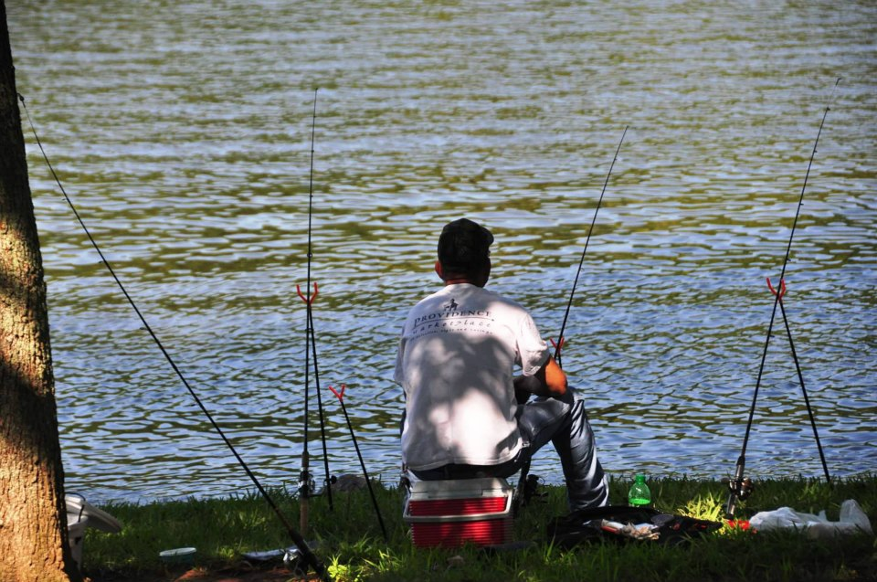 A man bank fishing on Old Hickory Lake